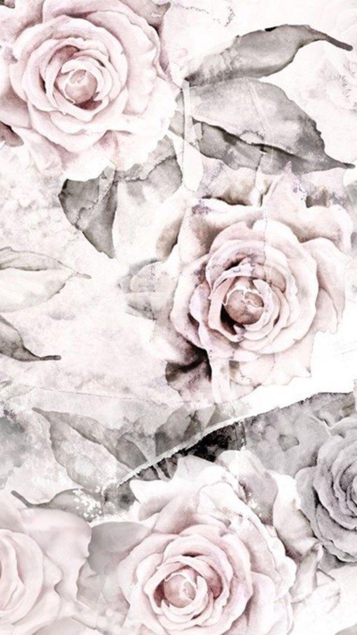Blush grey vintage roses iphone phone wallpaper background
