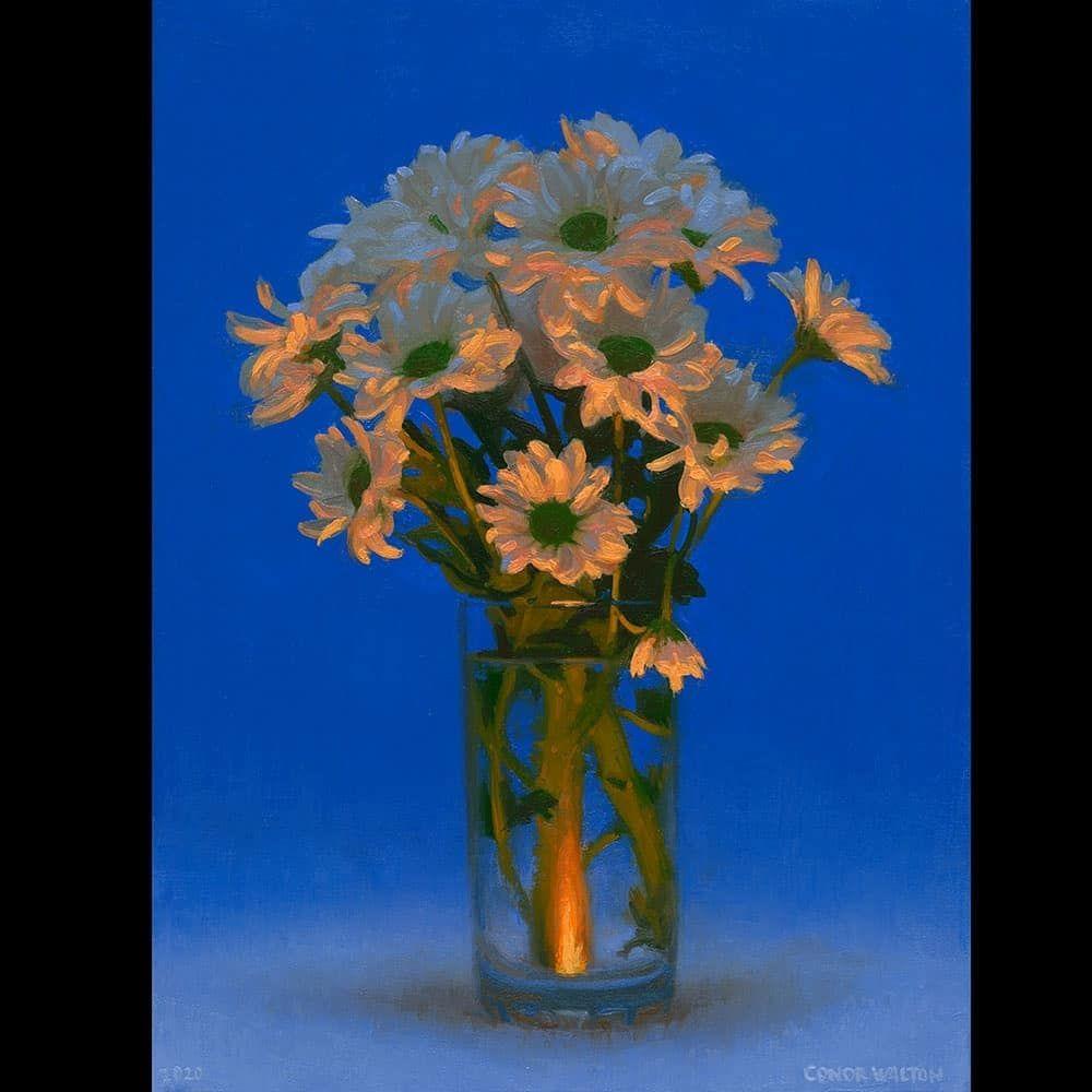 1 660 Me Gusta 21 Comentarios Conor Walton Conorwalton70 En Instagram Chrysanthemums Oil On Linen 40 X 30cm 2020 Chrysanthemum Flowers En 2020 Comentarios