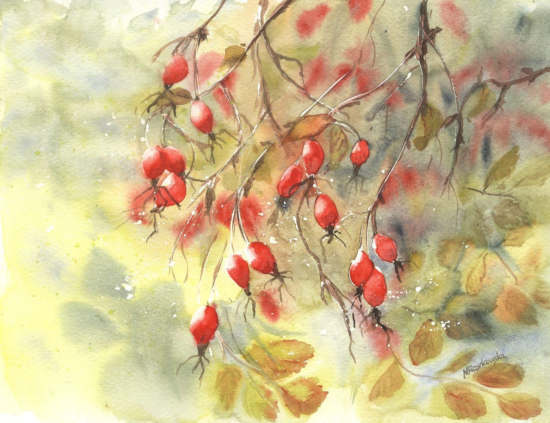 Dzika róża - Maria Roszkowska WATERCOLOUR