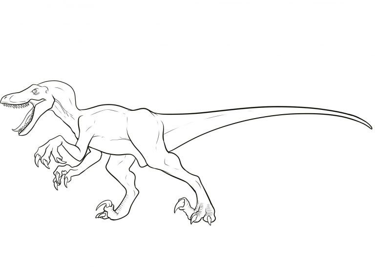 Velociraptor Coloring Pages Best Coloring Pages For Kids Dinosaur Coloring Pages Dinosaur Coloring Velociraptor Drawing