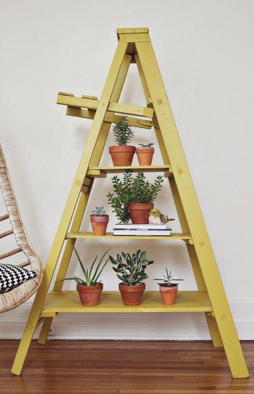 Diy Shelf Of Old Ladders Ladder Display Ladder Decor Old Ladder