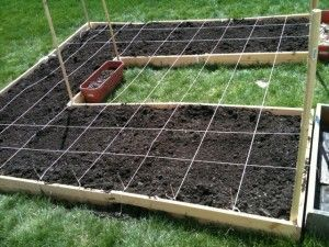 2a6ac7bd62cf9a997793eb58419adeb1 - Square Foot Gardening In The Ground