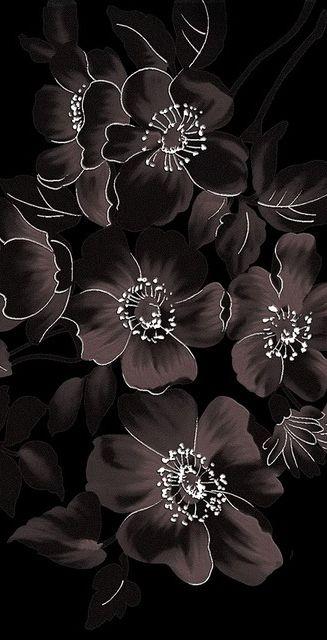 Pin On Black White Read Allover