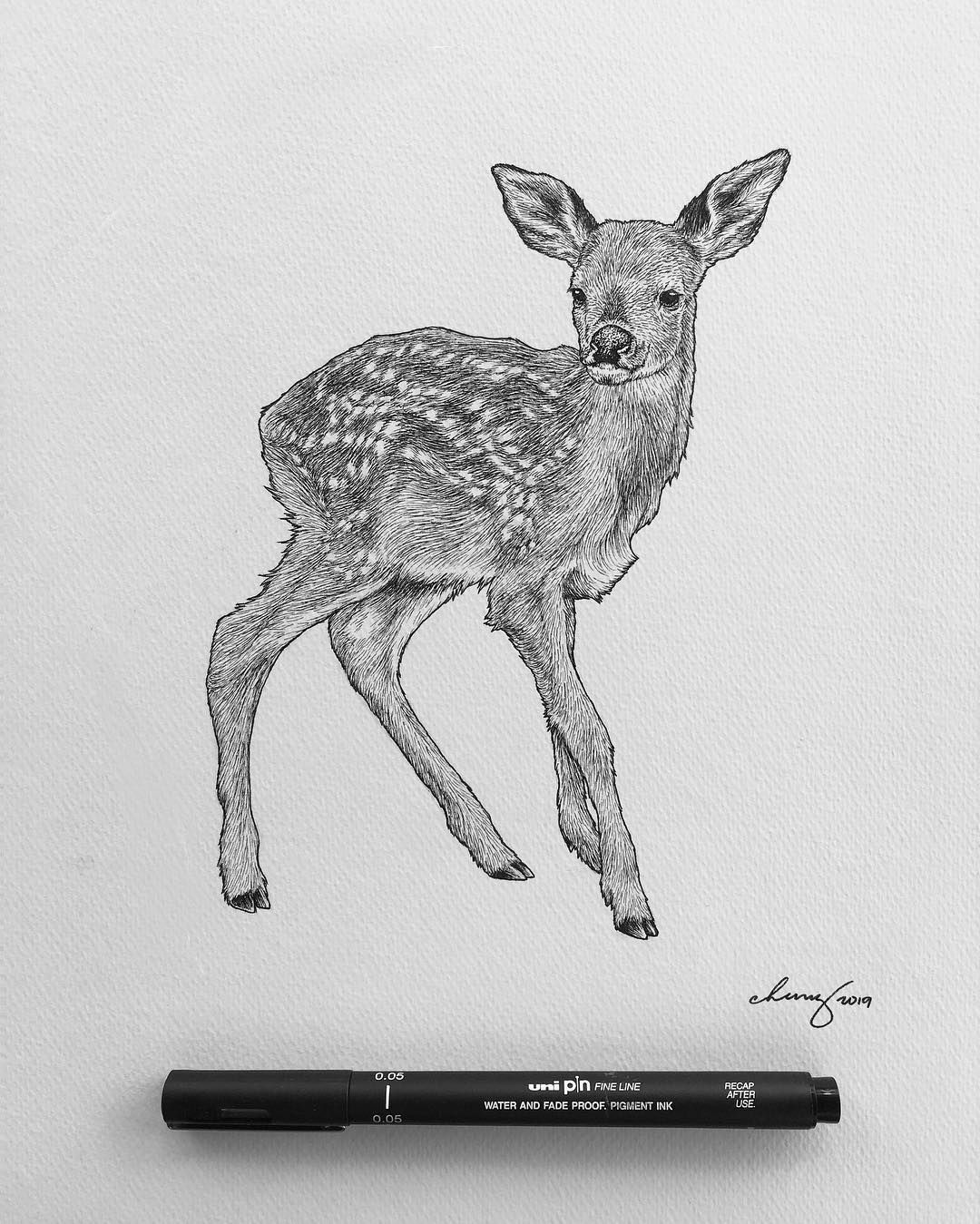 Just A Quick Fawn Drawing To Start The Week And Probably My Only Post For This Week Because I M Still Finishing A Current Project Drawings Animal Drawings Fawn