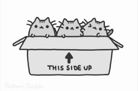 Pusheen In Black And White My Pusheen Love Pusheen Pusheen Love