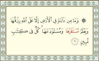 قل لن يصيبنا الا ماكتب الله لنا هو مولانا وعلى الله فل يتوكل المومنون