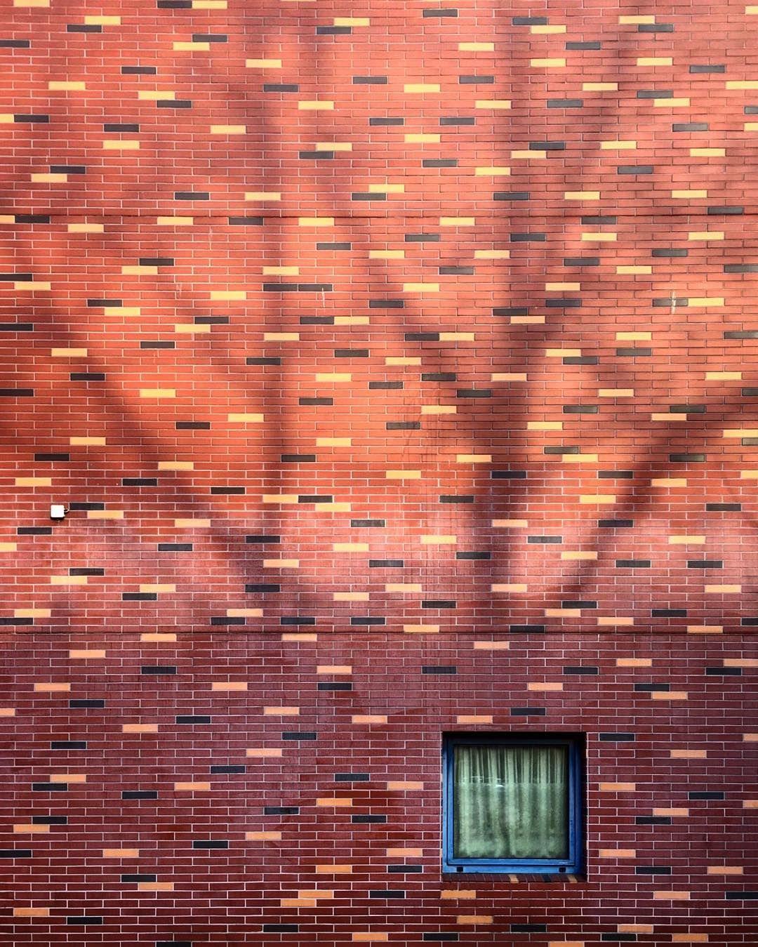 Treehouse ▫️▫️▫️▫️▫️▫️▫️▫️▫️▫️▫️▫️▫️▫️▫️▫️ #ihaveathingforwalls #jj_cheers_walls #jj_doorsandwindows #rsa_doorsandwindows  #harmonyoflight #igersfrankfurt #doorsandwindows_greatshots #living_europe