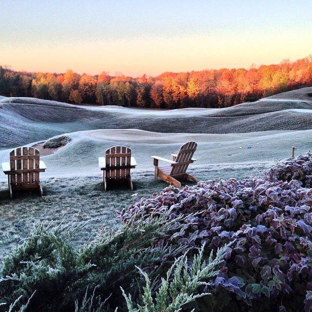A Blend Of Morning Frost & Fall Foliage at Grand Traverse Co MI--Pure Michigan