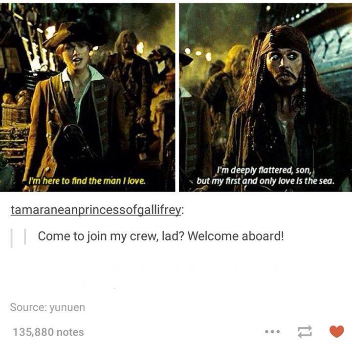 Pity, captain gay jack sparrow agree