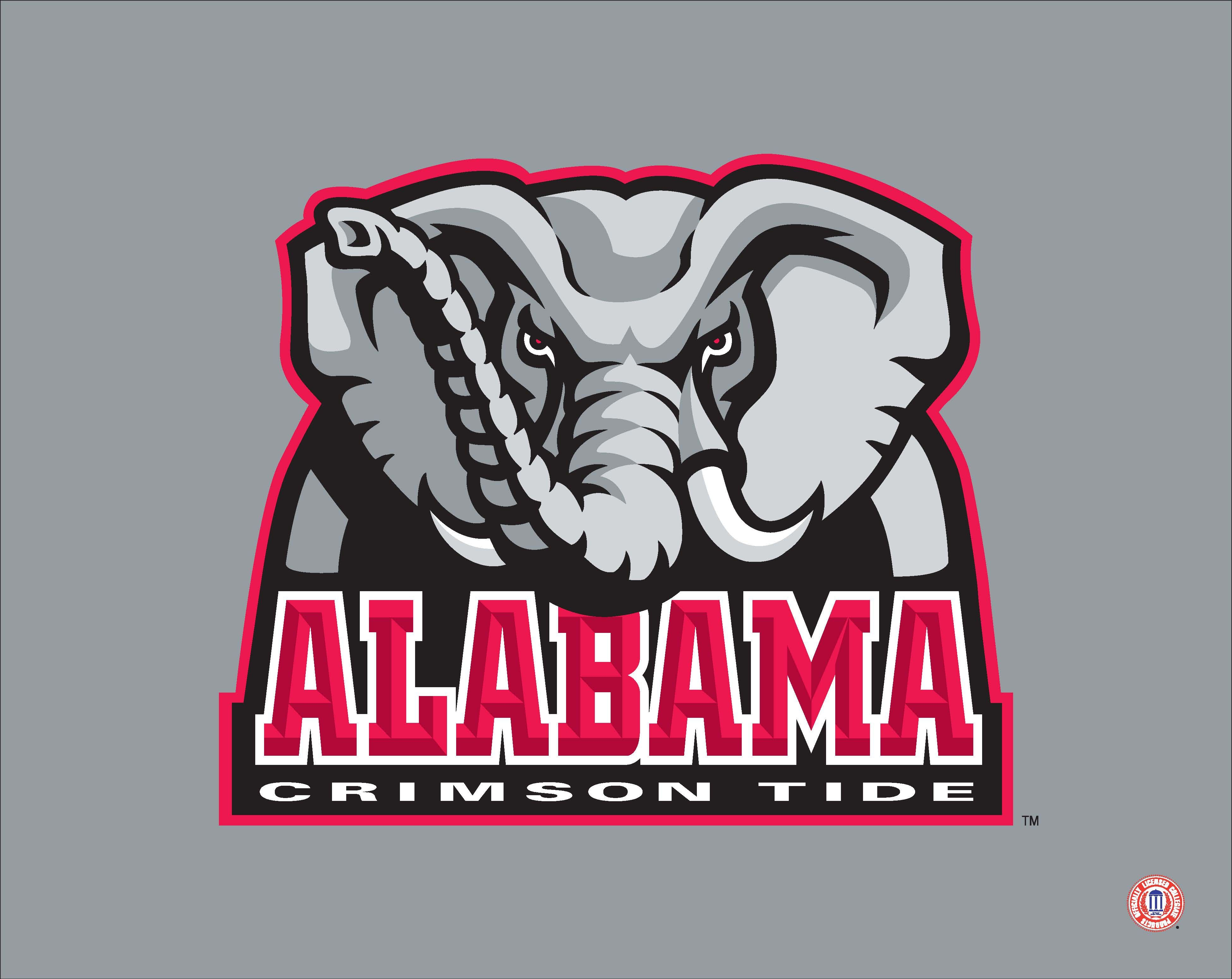 Pin By Artissimo Sports Ent On College Sports Alabama Crimson Tide Crimson Tide Alabama Crimson