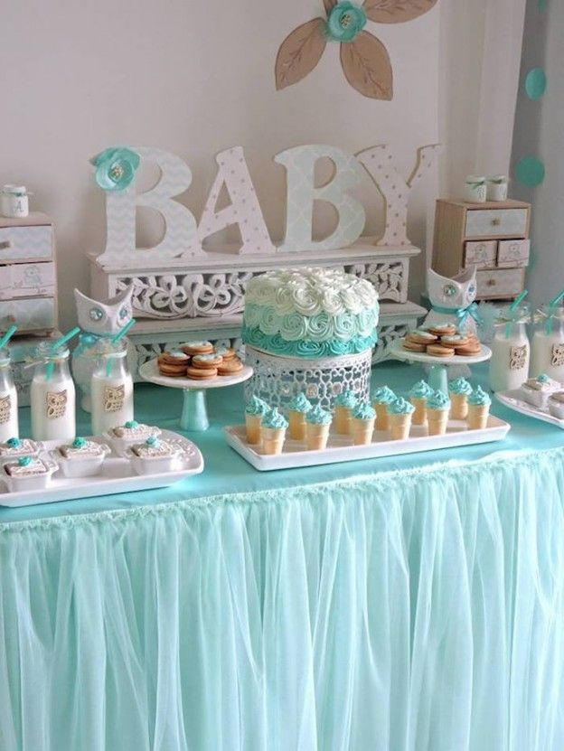 Turquoise Owl Welcome Home Baby Party Via Karas Ideas