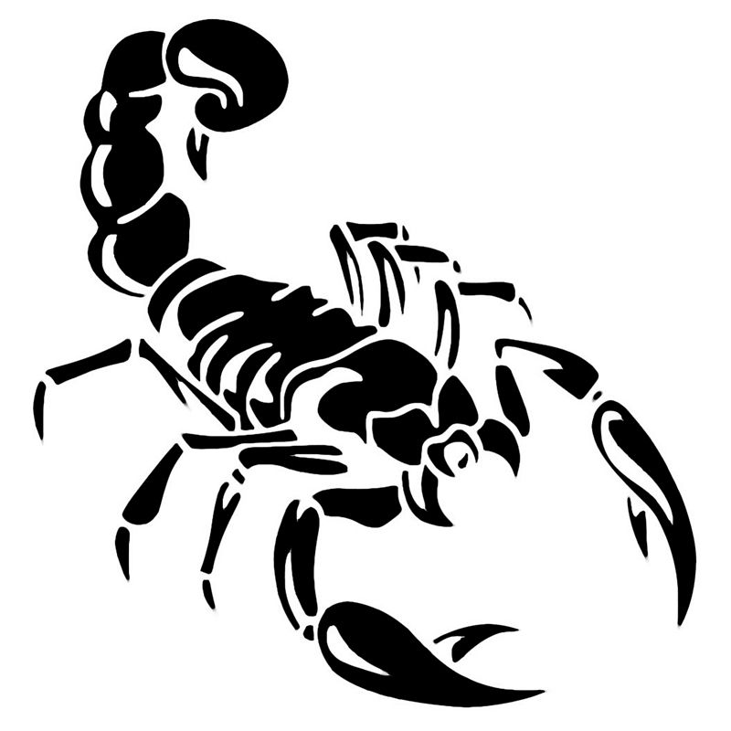 Wholesale Pcslot Pcslot Classic Scorpion Insect Vinyl Decal - Vinyl decals for cars wholesale