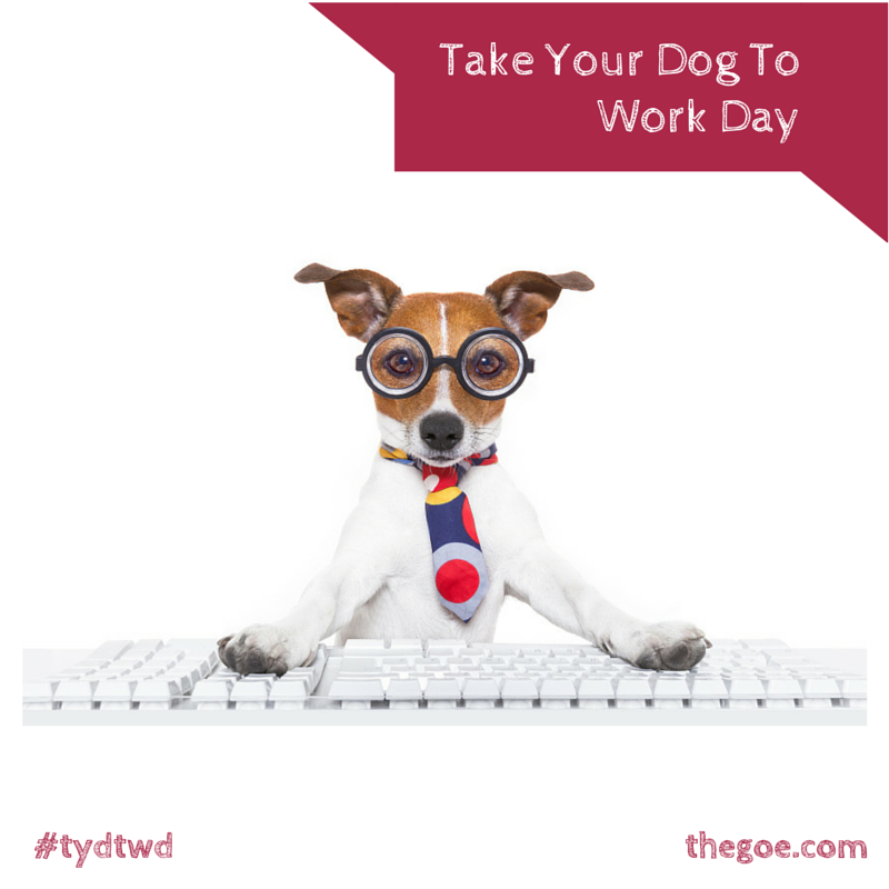 National Take Your Dog To Work Day tydtwd Your dog