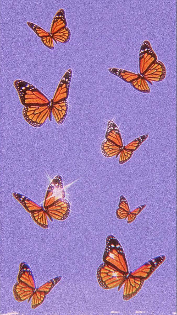 butterfly wallpaper in 2020 | Butterfly wallpaper iphone ...