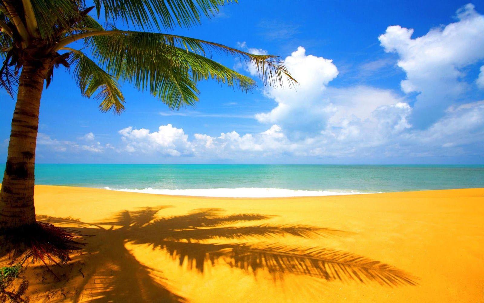 Ganti Wallpaper Komputer Kamu Sekarang Dengan Gambar Pantai Pemandangan Di Pantai Latar Belakang
