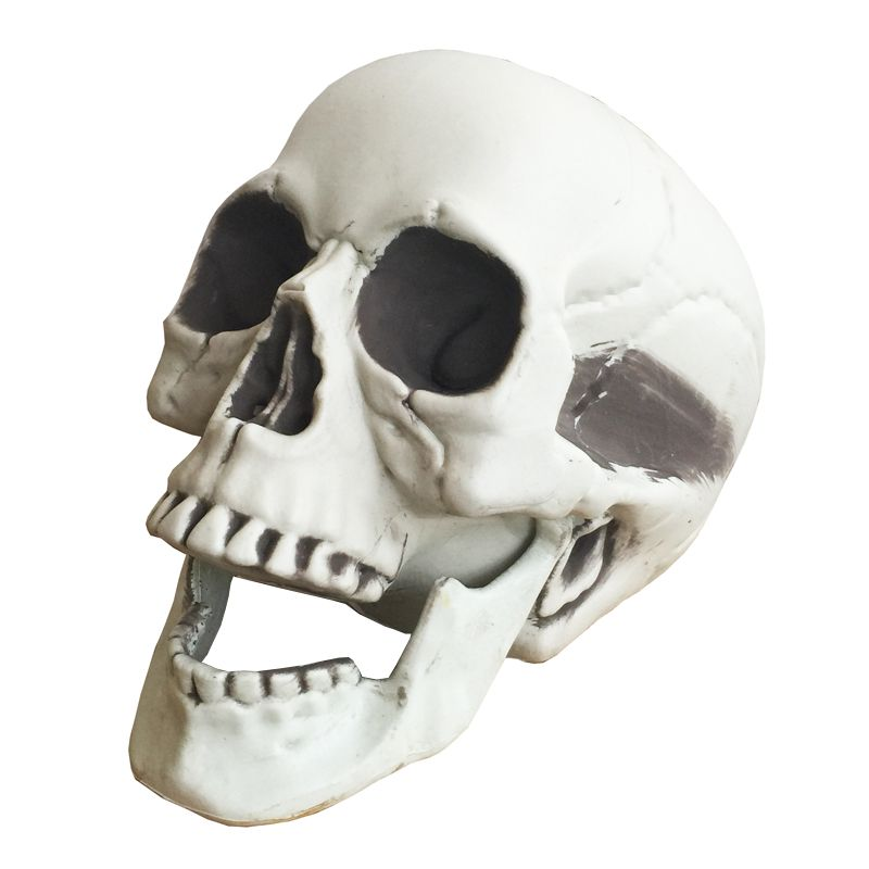 halloween skeleton skull halloween skull bones life size160 skull haunted house escape horror props decorations - Halloween Skeleton Head