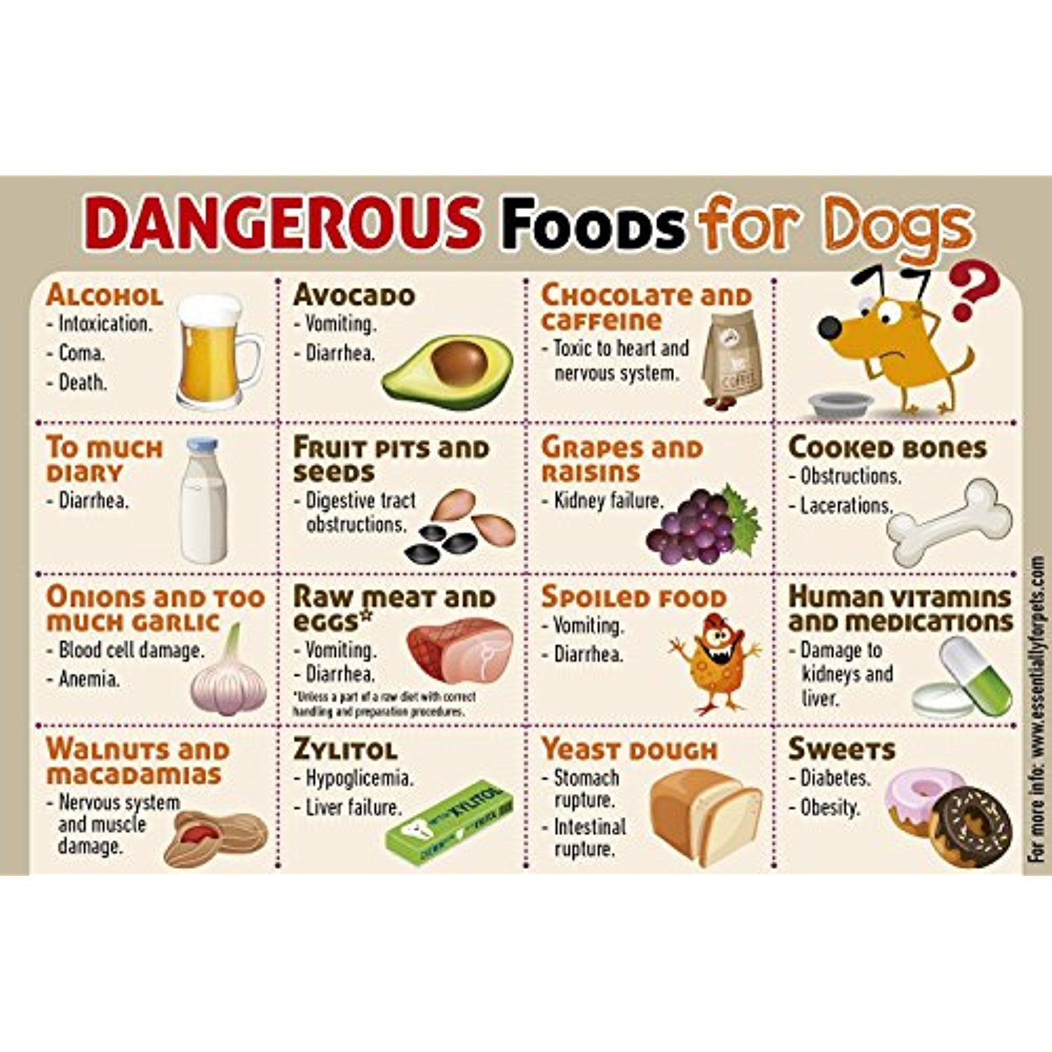 Safe Dog Care Information Sheets Healthy Snacks Foods To Avoid