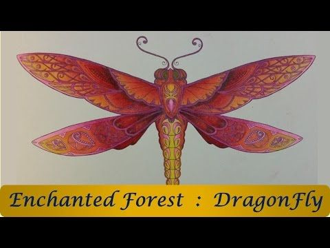 Hi Guys In This Video You See Me Color The DragonFly Enchanted Forest Coloring Book By Johanna Basford I Used Prisma Premier Pencils And