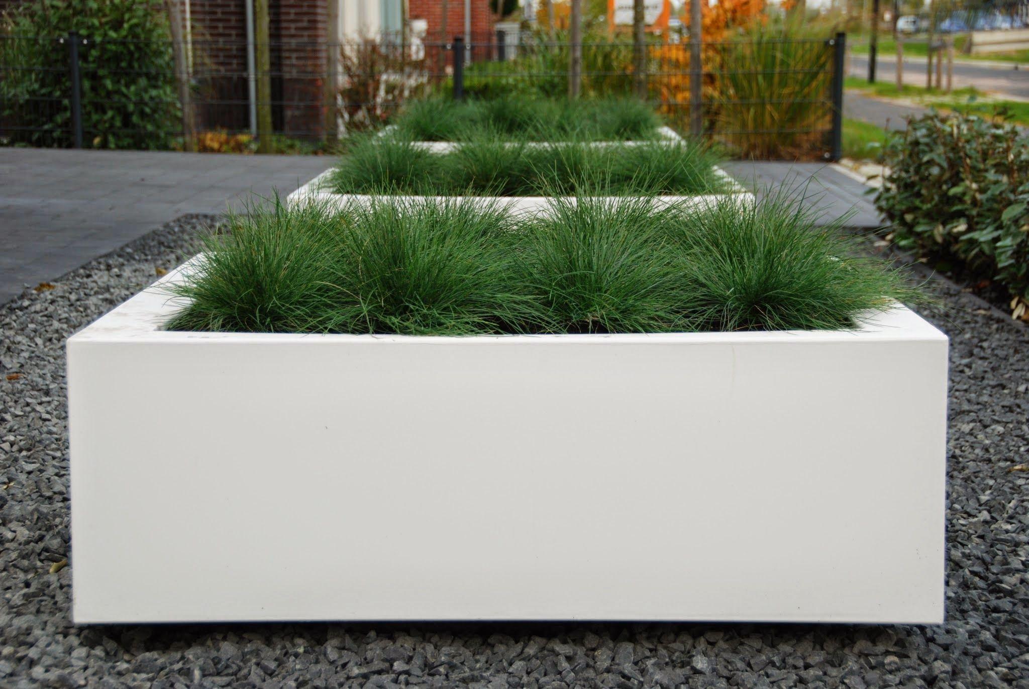 De Petits Espaces Verts Dans Des Jardinieres En Aluminium Voortuin Tuin Voortuin Ideeen