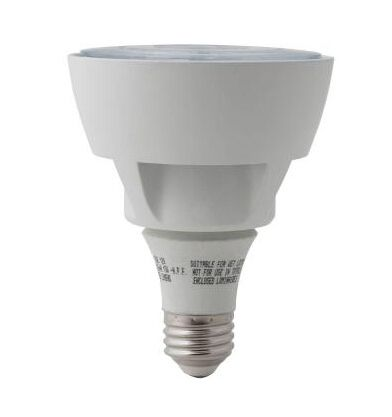 Home Depot Exterior Led Flood Light Bulbs