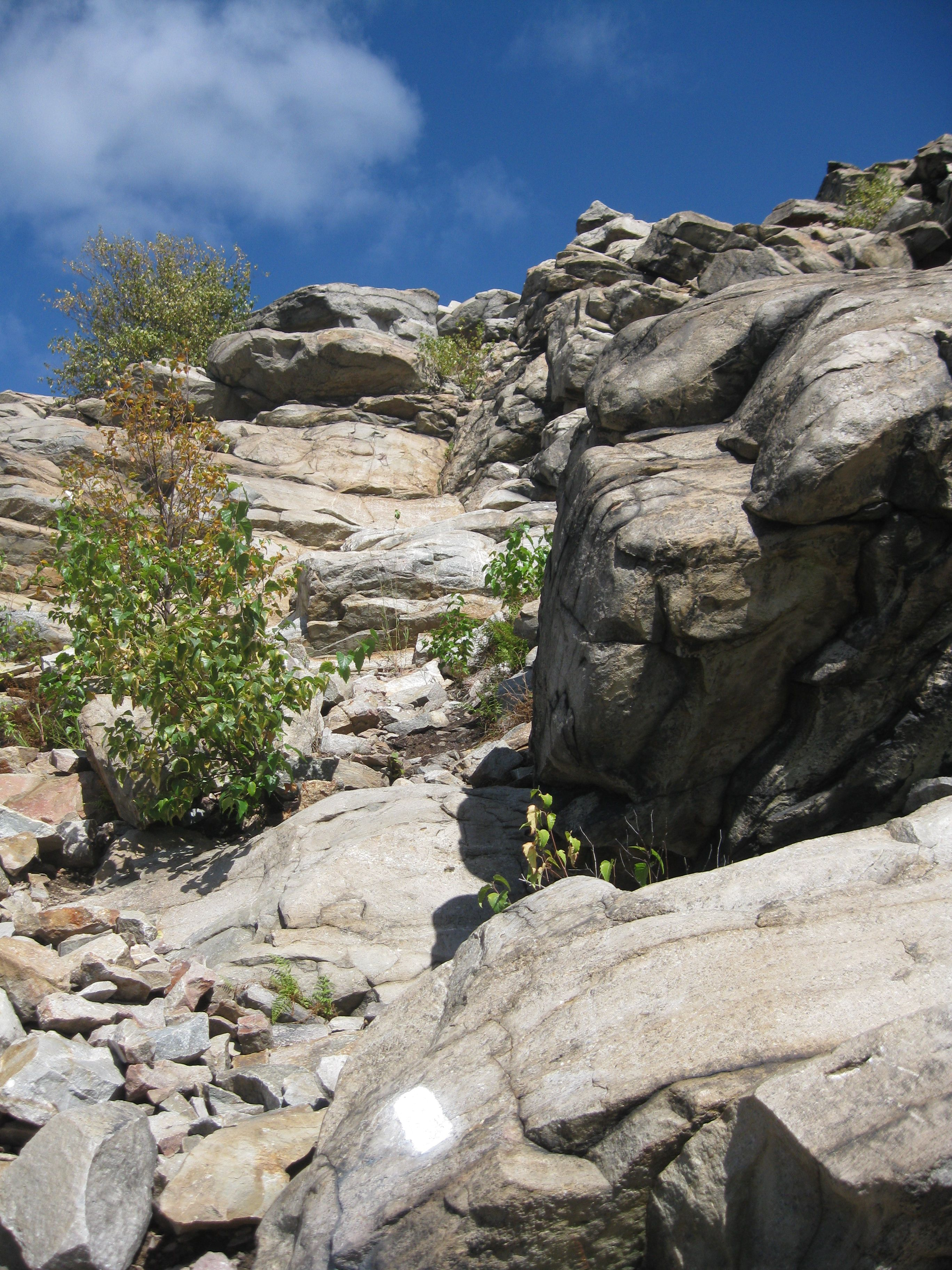 The L resort Krabi krabi-rock-climbing.jpg   Rock climbing