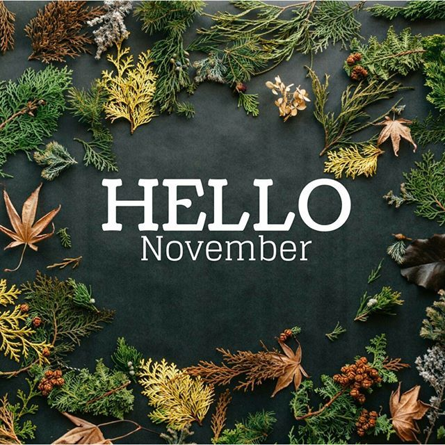 "Lynnis HolisticLiving&Wellness on Instagram: ""Hello November! #helloNovember #november #fall #Fall2018"""