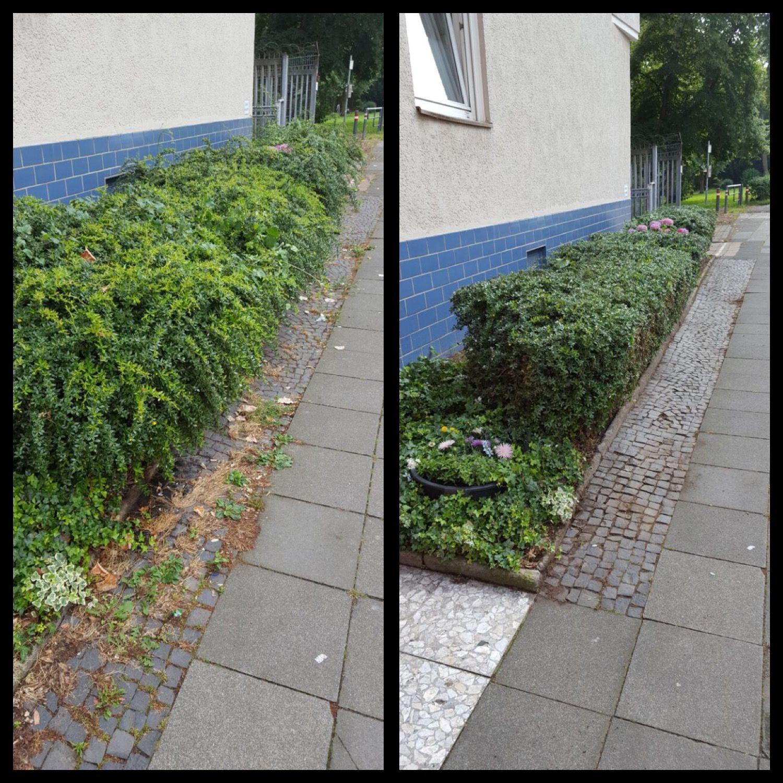 Entzückend Gartengestaltung Vorgarten Dekoration Von Ihr Soll Repräsentativer Wirken? Kein Problem, Die