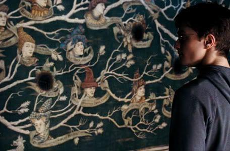 Sirius Black Wallpaper House Tree Google Search Black Wallpaper Tapestry Wallpaper Home Wallpaper