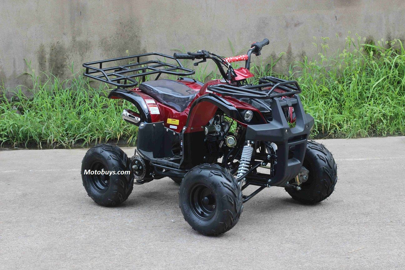 Regency Mountain Cat 125 Su Sport Utility Atv 125cc Quad Oversize 16 Tires With Reverse Cool Bikes Regency Rancher