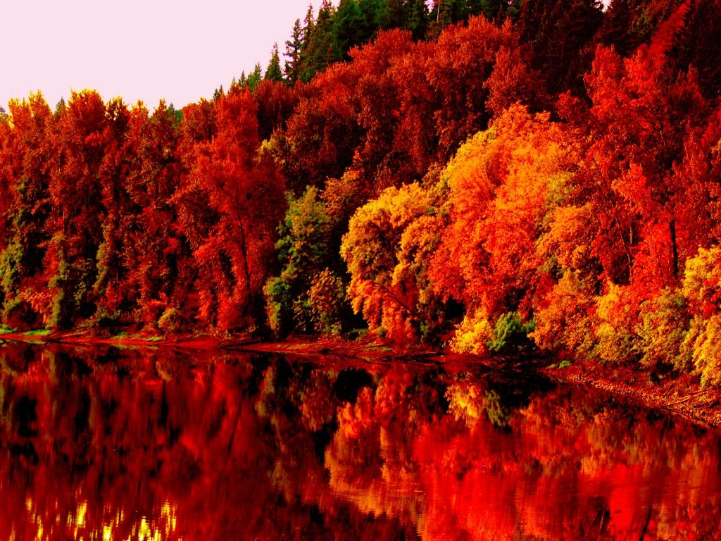 Wallpaper Collection 37 Best Free Hd Autumn Desktop Wallpaper Background To Download Pc In 2020 Desktop Wallpaper Fall Fall Pictures Fall Wallpaper