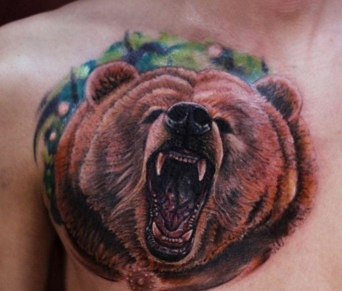 t te d 39 ours color de tatouage sur l 39 omoplate tatouage pinterest tatouage tatouage ours. Black Bedroom Furniture Sets. Home Design Ideas