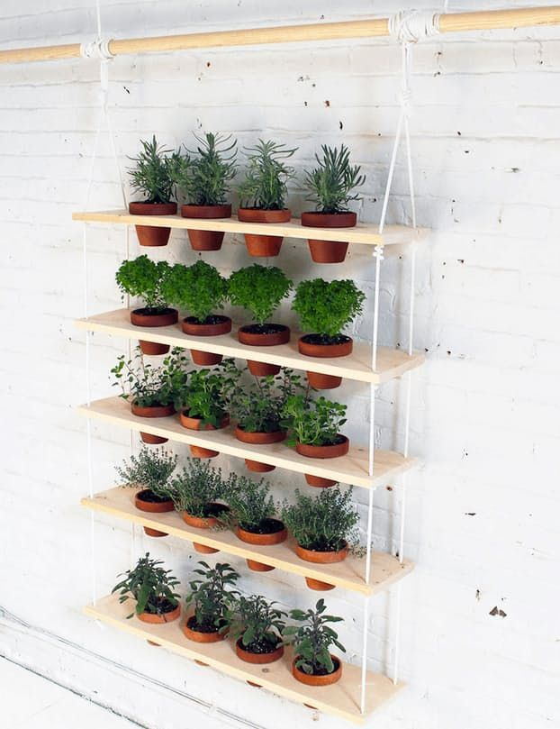15 indoor garden ideas for wannabe gardeners in small on indoor herb garden diy wall vertical planter id=96833