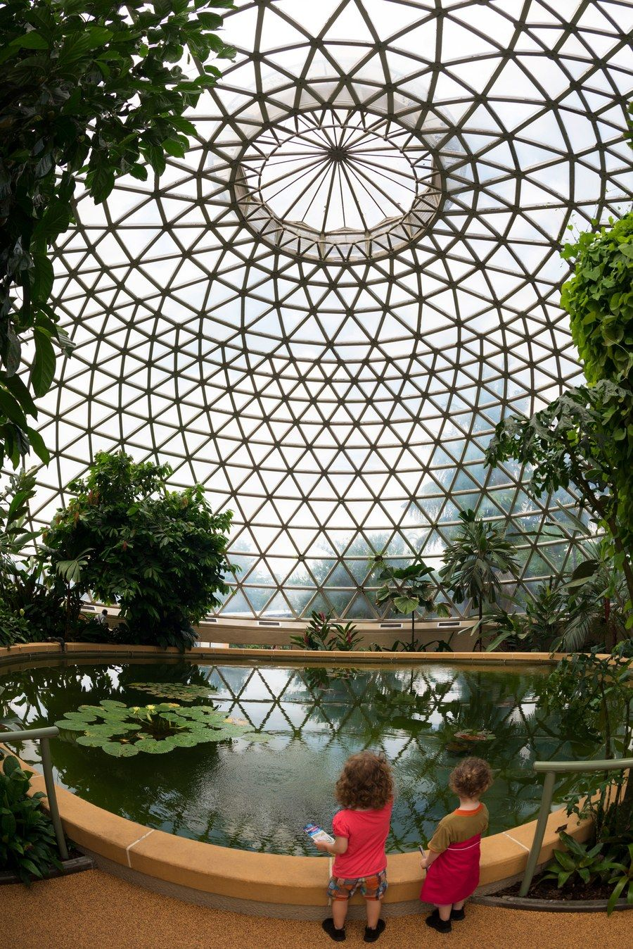 the atrium at the brisbane botanic gardens mount coot tha in