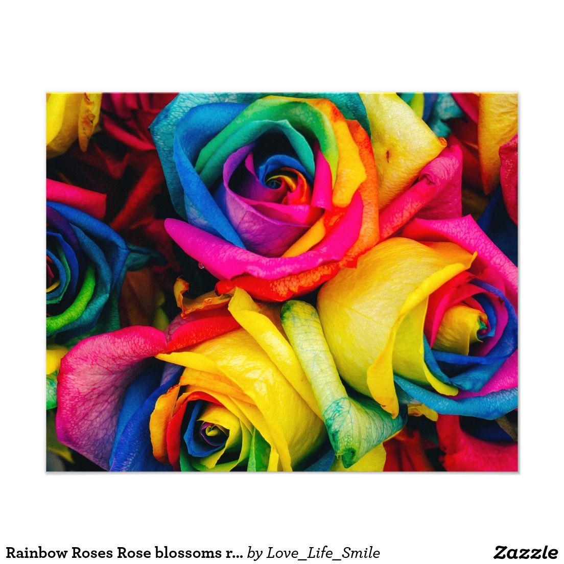 Rainbow Rose Rainbow Roses Rainbow Flowers Beautiful Roses
