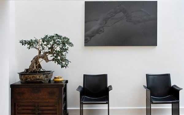 1000 images about office on pinterest waiting rooms and decorating ideas bonsai tree interior