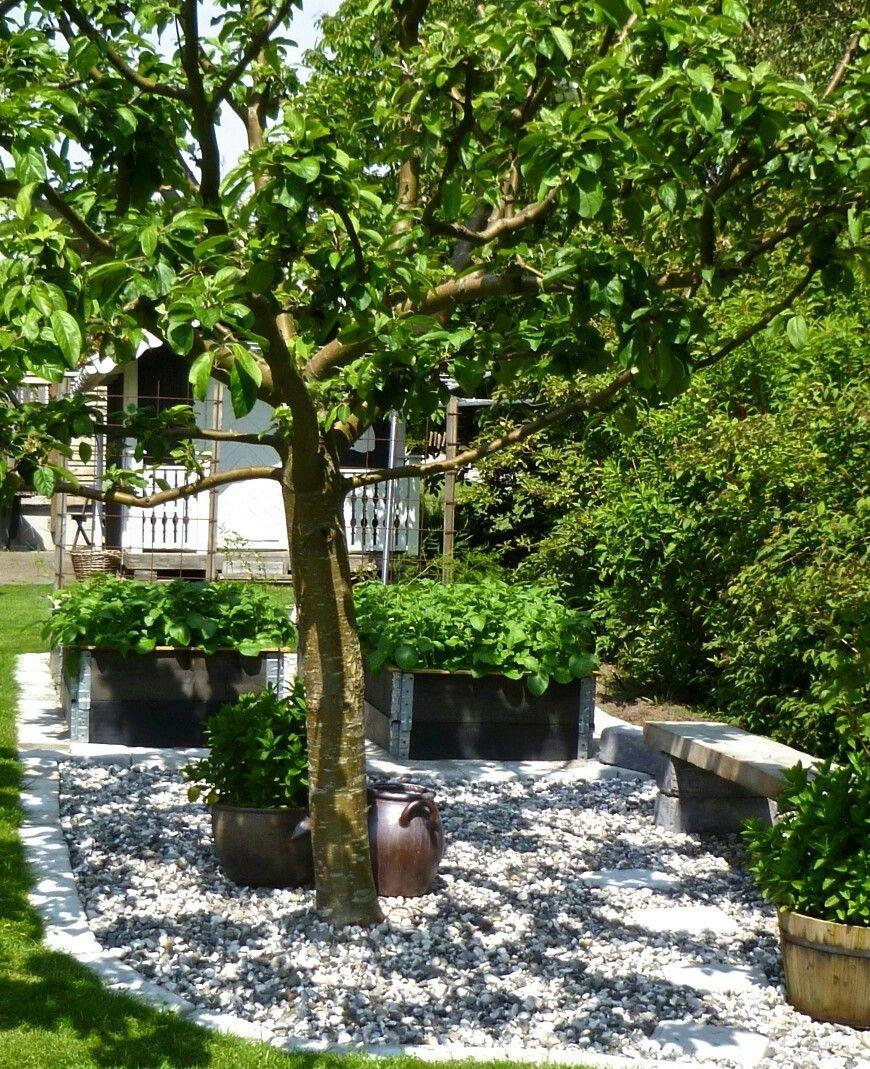 Trädgård plank trädgård : Grus träd och pallkrage | TrädgÃ¥rd vid odlingar | Pinterest ...