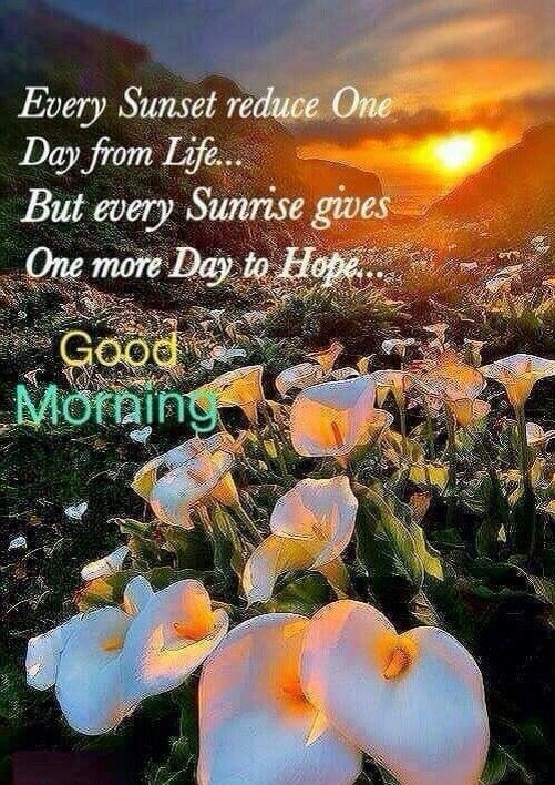 Good Morning Every Sunrise Gives Hope Good Morning Pinte