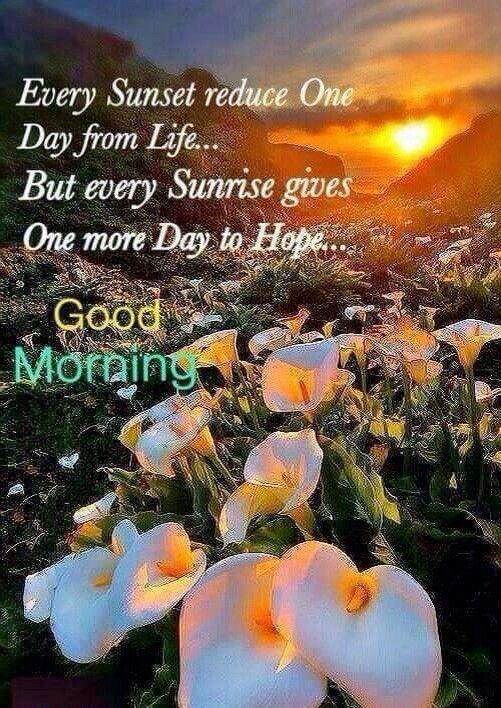 Good Morning Every Sunrise Gives Hope Good Morning Morni