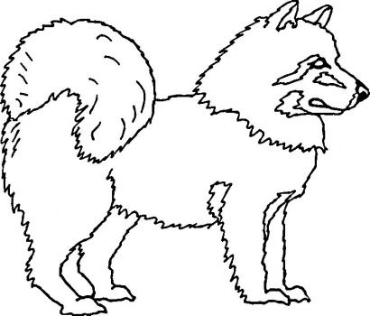 Dog Color Pages Printable American Eskimo Dog Coloring Page