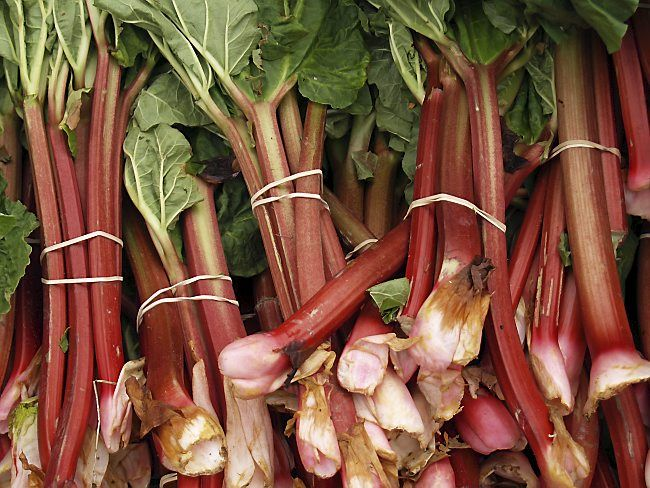 In the Kitchen: As rhubarb ripens, use tart fruit in bars and streusel-topped bread