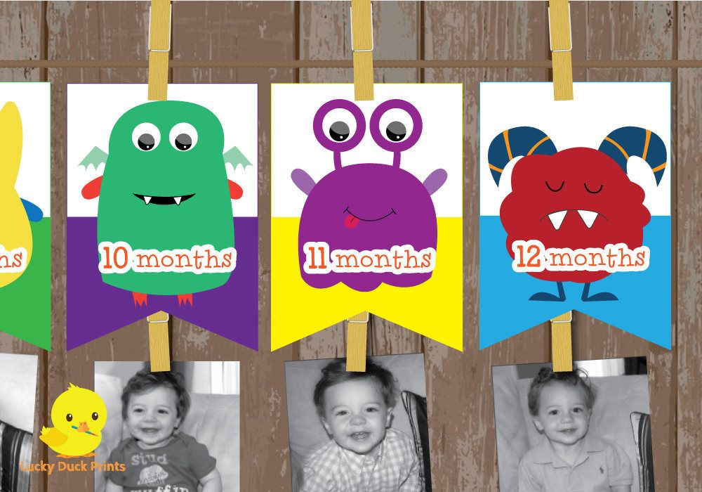 1 12 Month Monster Photo Banner The Big One Birthday Monster