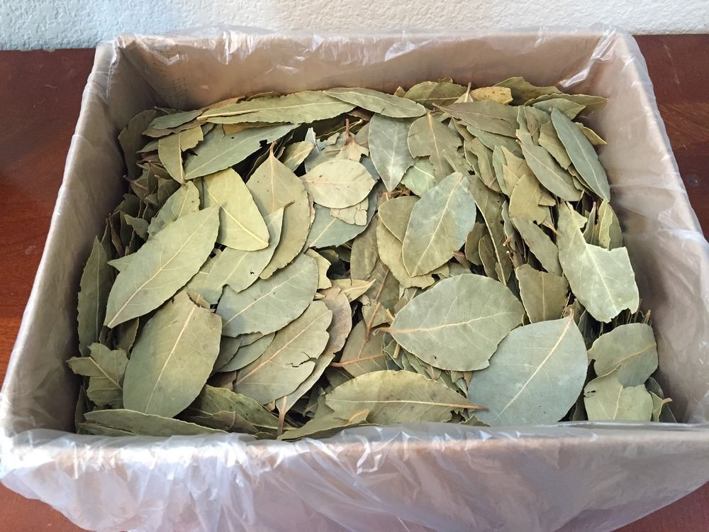 Bay Leaves - US $22.85 New in Home & Garden, Food & Beverages, Spices, Seasonings & Extracts