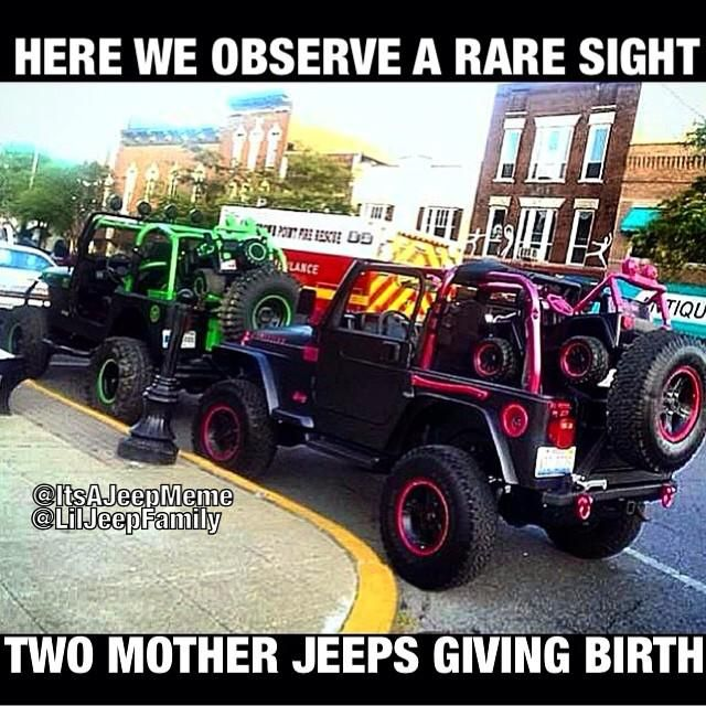 Shannon Jeepbrother On Jeep Memes Jeep Cars Jeep Life