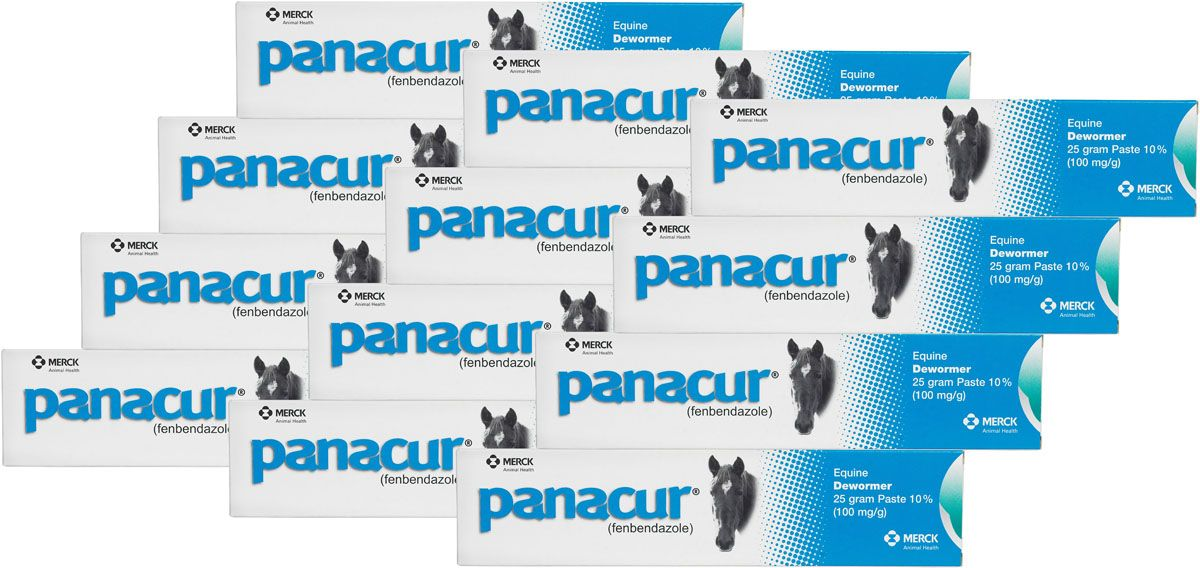 Panacur Equine Paste Horse Dewormer (With images