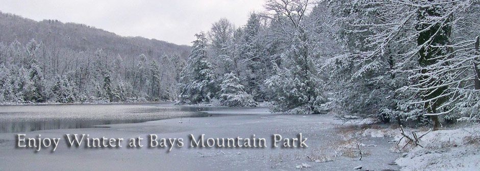 Bays Mountain Park and Kingsport, TN (With