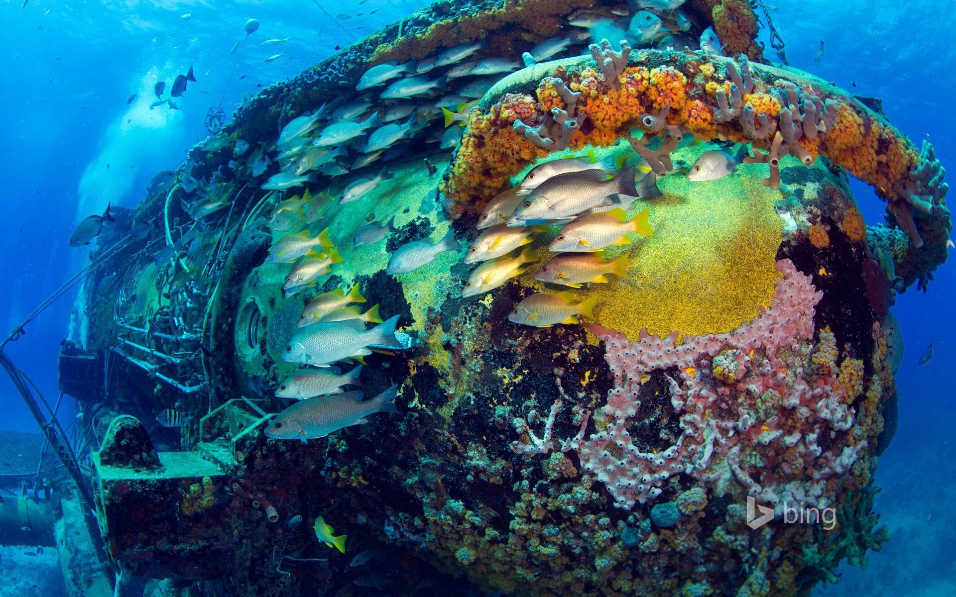 Epave sous l'eau '''