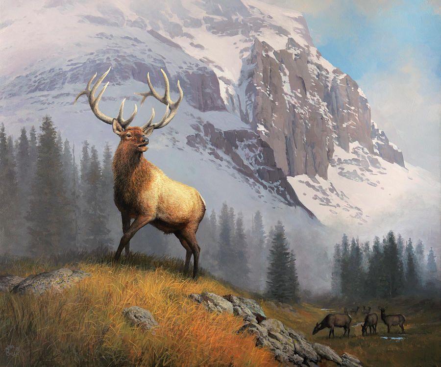 Regal Bull By John Cogan Deer Painting Hunting Art Animal Paintings