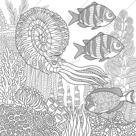 Ocean World Seahorse Nautilus Tropical Fishes 3 Coloring