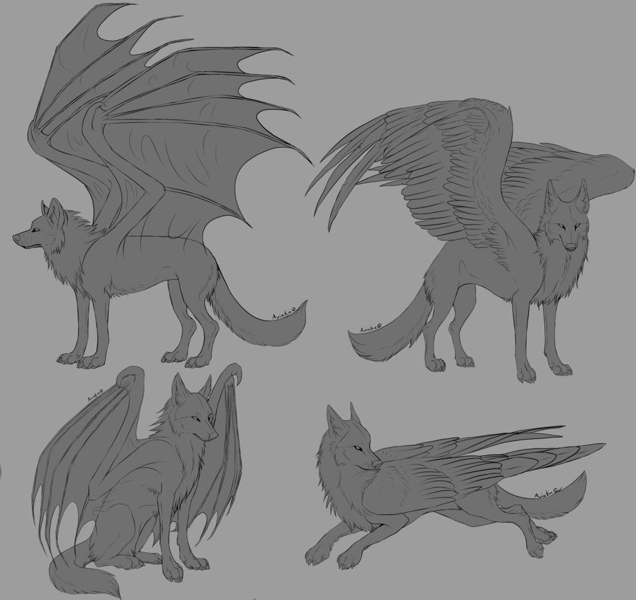 Photo of Free Winged Wolf Linearts by Aviaku on DeviantArt