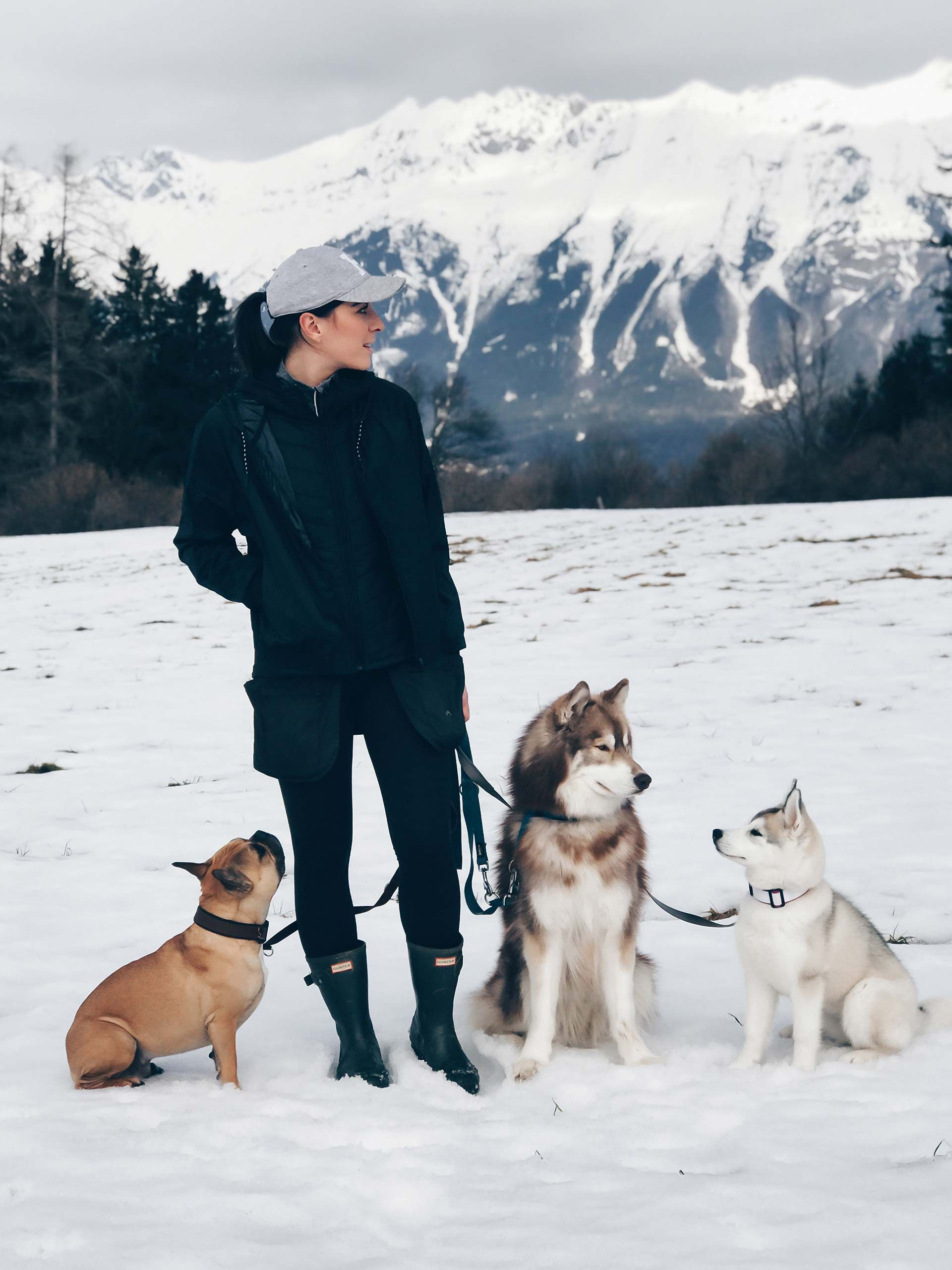 Das Muss Mein Gassi Outfit Im Fruhling Konnen The Pawsome Tyroleans Hunde Hund Portraits Hundefotos